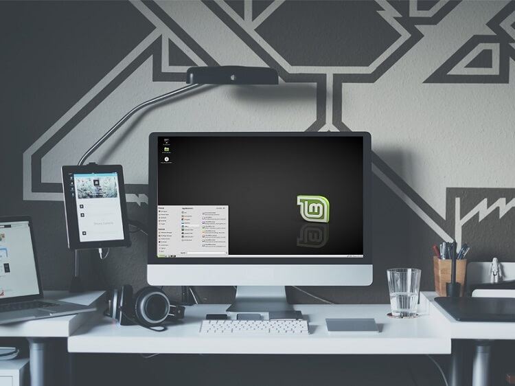 How to dual boot Linux mint and windows 10 (UEFI)