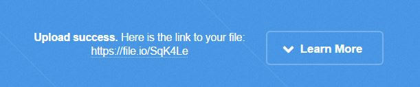 Anonymous File Sharing - File.io 2