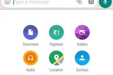 Get Payment Option in WhatsApp.