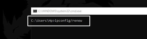 Renew IP