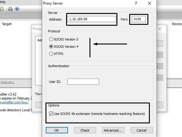 Enter Proxy Details in Proxifier