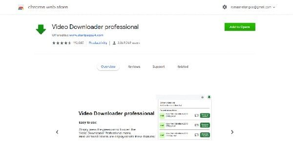 Video Download Professional