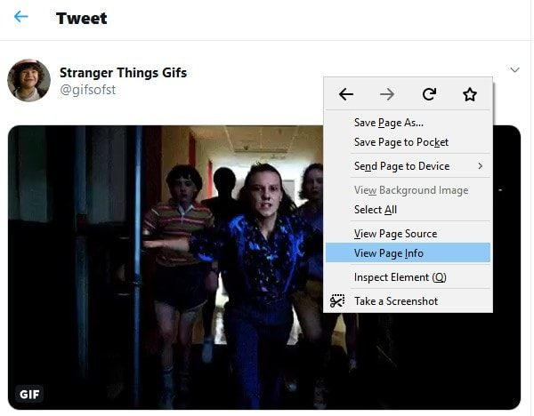 Download GIF - VIew Page Info Firefox