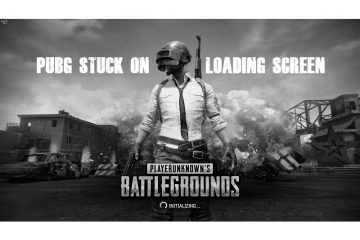 PUBG Stuck On Loading Screen
