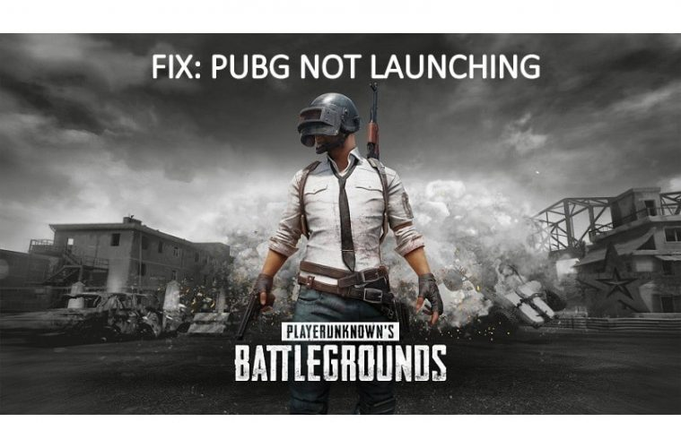 PUBG not launching after update