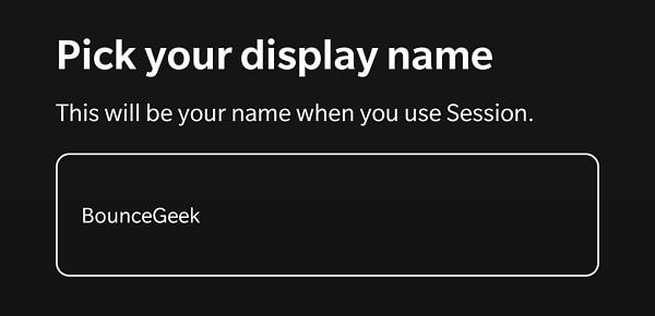 Pick your display name - Session Private Messenger