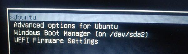 Dual Boot Ubuntu 20.04 and Windows 10 - Select Ubuntu