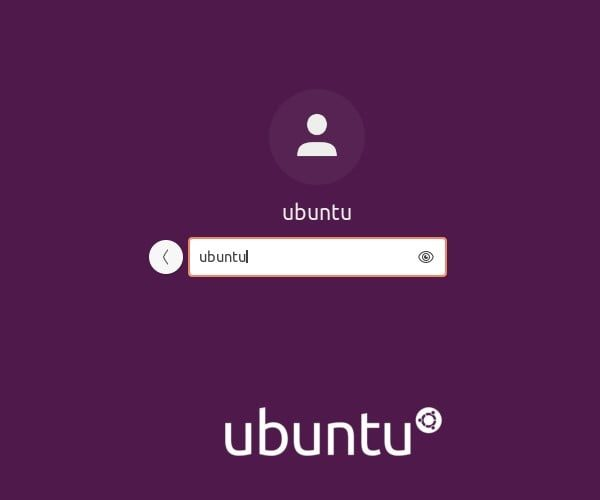 Login - Install Ubuntu 20.04 LTS on VMware Player