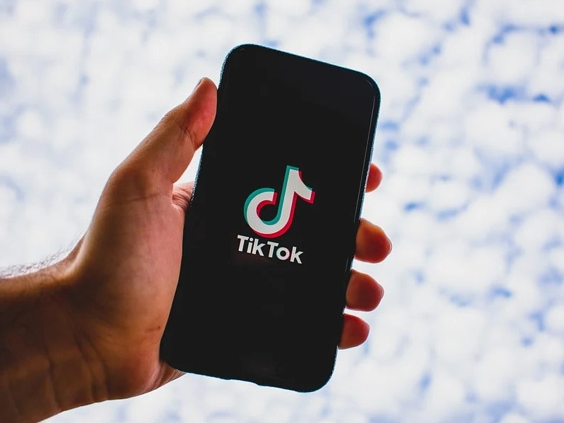 Download TikTok Videos After BAN In India