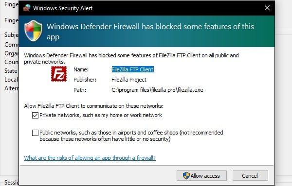 Allow FIleZilla FTP Client - Windows Defender Firewall