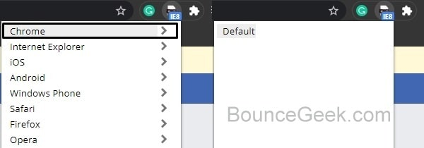 Switch Back to Default Chrome
