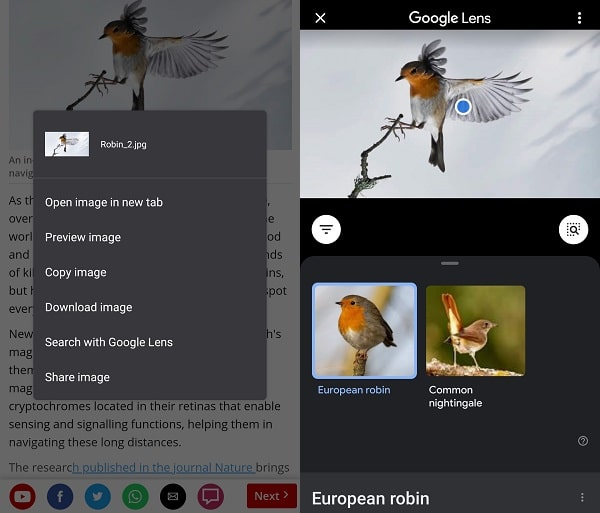Search with Google Lens - Chrome Image Search